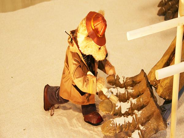 庆州泰迪熊博物馆恐龙馆一