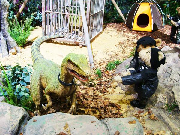 庆州泰迪熊博物馆恐龙四