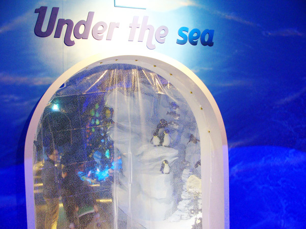 庆州泰迪熊博物馆海洋馆二