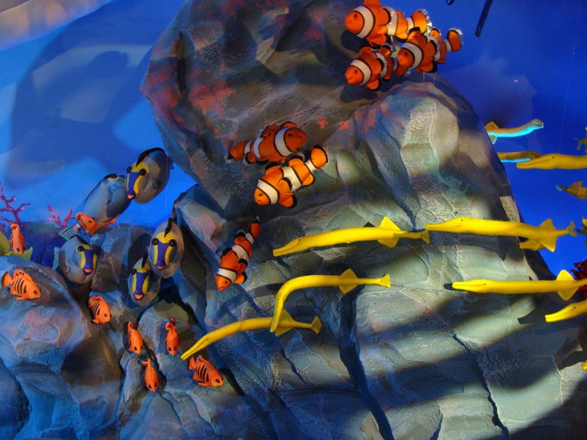 庆州泰迪熊博物馆海洋馆五