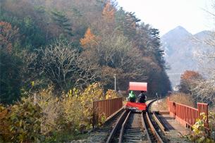 江村铁路自行车+南怡岛一日游