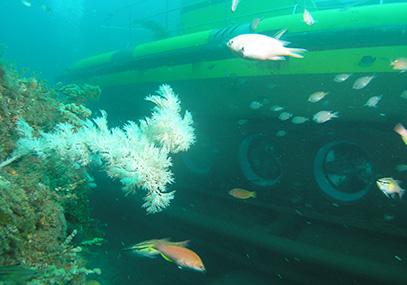 济州岛牛岛潜水艇
