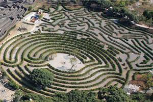 济州岛Mazeland迷路公园_韩国景点_韩游网
