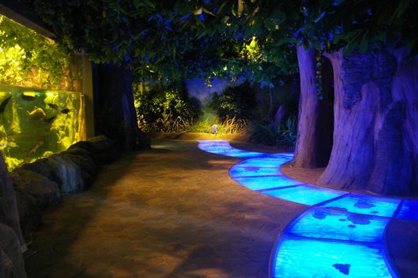 济州Aqua planet水族馆一层