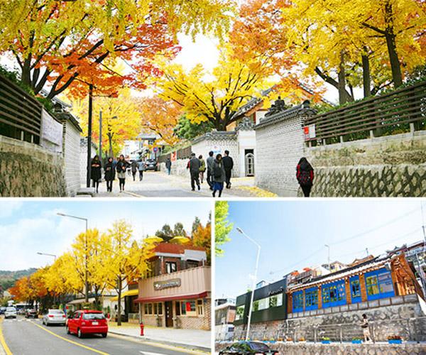 韩国枫叶大赏游览地点30