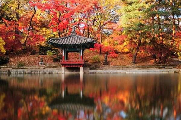 韩国枫叶大赏游览地点7