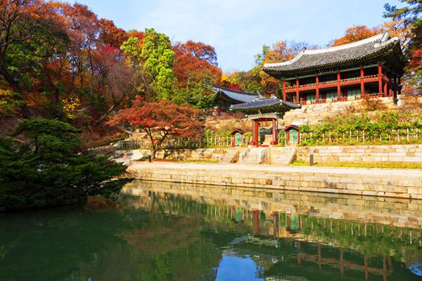 韩国枫叶大赏游览地点9