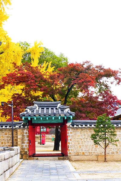韩国枫叶大赏游览地点18