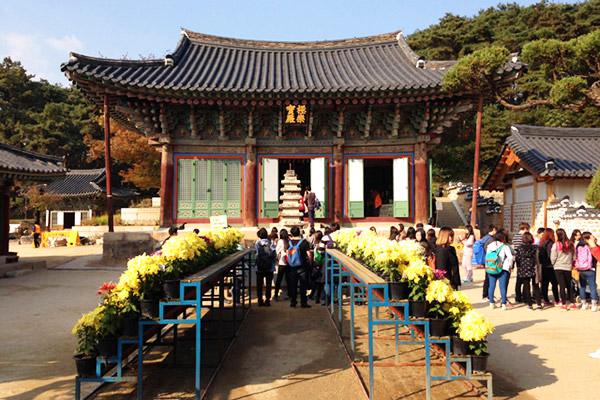 韩国枫叶大赏游览地点20