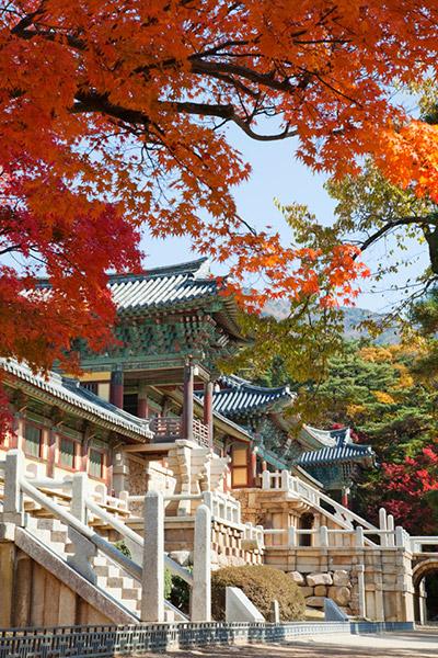 韩国枫叶大赏游览地点22