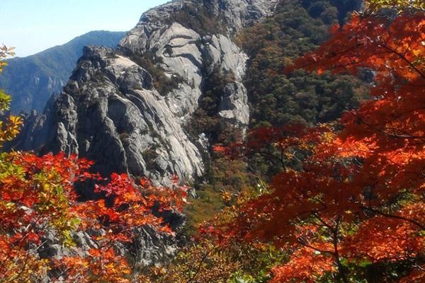 韩国枫叶大赏游览地点28