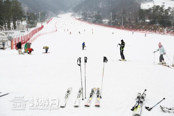 京畿道芝山森林滑雪套餐