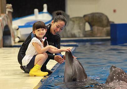 濟州Aqua planet水族館(水上星球)門票在線預訂優惠-韓遊網