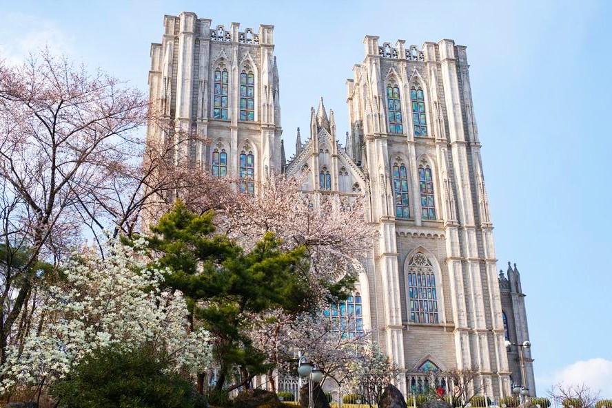 2016春天最美大学首尔地区BEST5 9