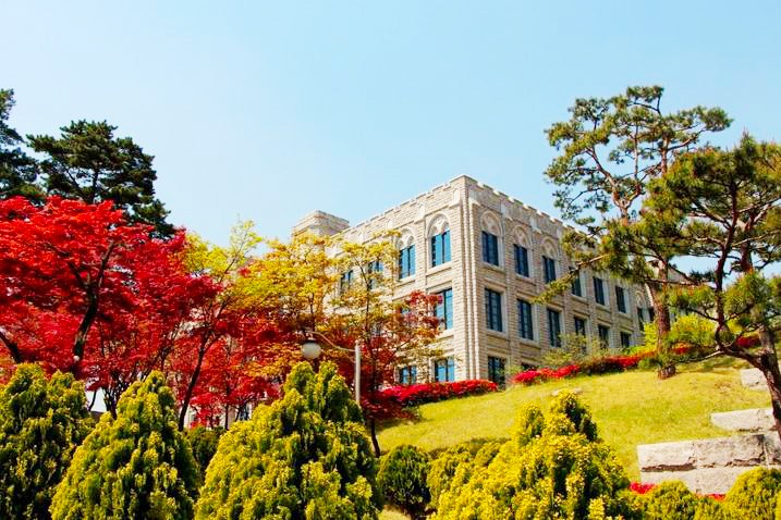 2016春天最美大学首尔地区BEST5 13