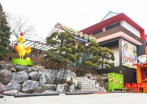 韩国正宗百年传统参鸡汤