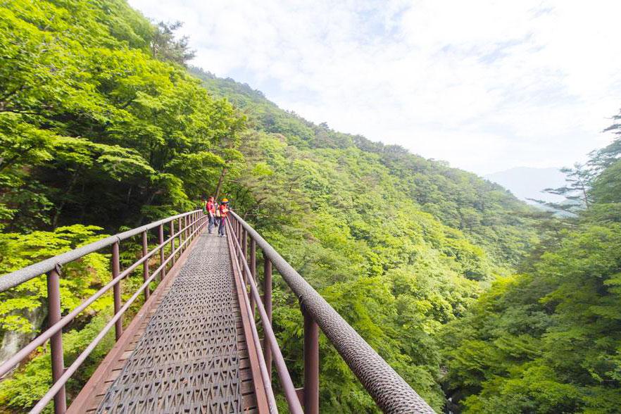 韩国小白山国立公园_韩国景点_韩游网