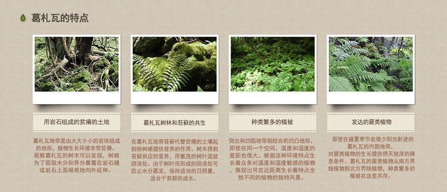 济州岛Ecoland生态乐园主题公园_韩国景点_韩游网