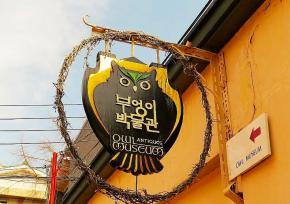三清洞猫头鹰博物馆