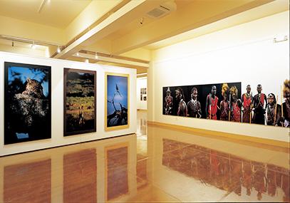 济州岛非洲博物馆地址_非洲博物馆门票在线优惠预订-韩游网