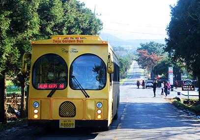 济州岛黄金观光巴士线上预订优惠
