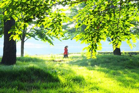 一山湖水公园《好运罗曼史》拍摄地_韩国景点_韩游网