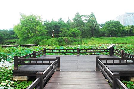 自然乐园-(12).jpg