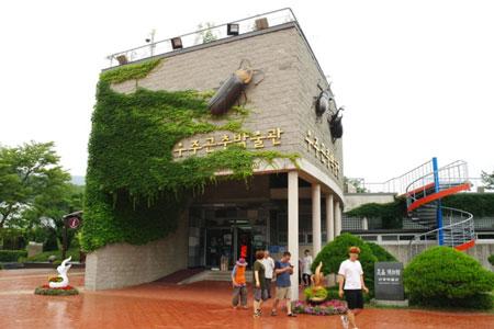 昆虫博物馆4.jpg