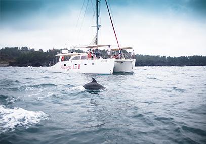 济州岛香格里拉游艇观光在线预定优惠_济州岛观光-韩游网