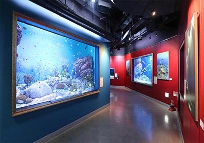 首尔COEX水族馆预订_COEX水族馆_韩游网