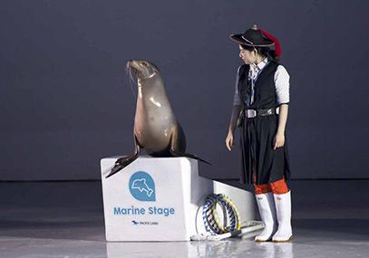 济州岛西归浦太平洋乐园动物表演门票在线预定优惠-韩游网