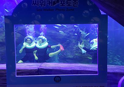 熊津水族馆海底漫步体验_在线预订_韩游网