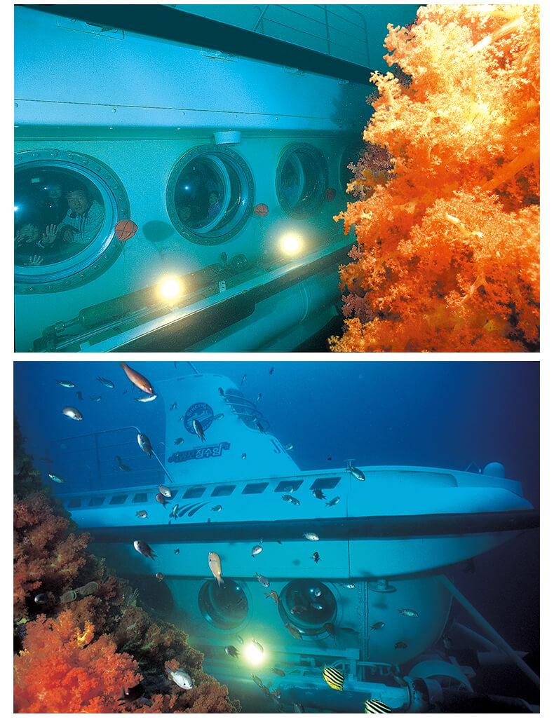 济州岛西归浦潜水艇-详情页_03.jpg