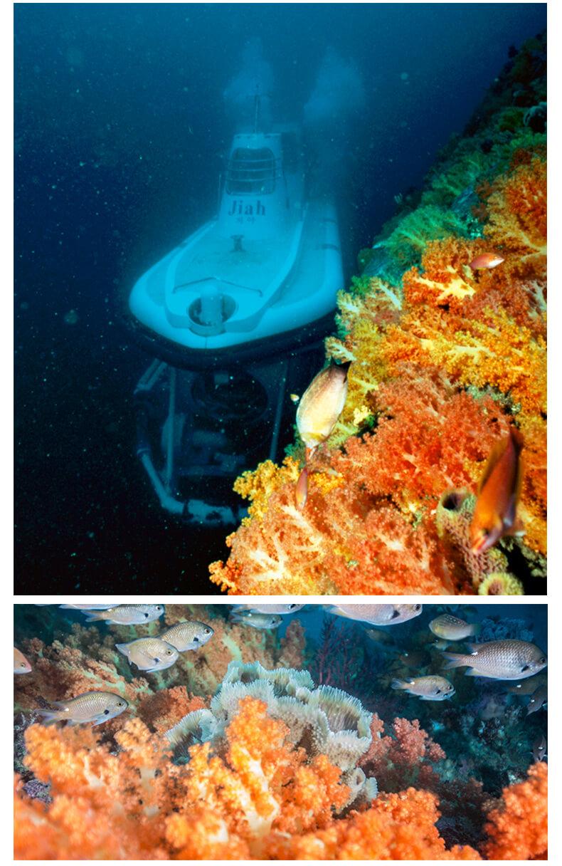 济州岛西归浦潜水艇-详情页_07.jpg