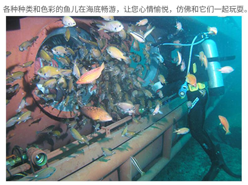 济州岛牛岛潜水艇-详情页_05.jpg