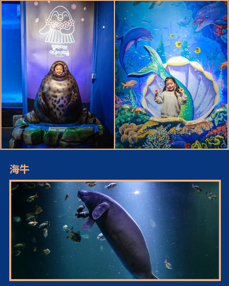 大邱水族館繁_02.jpg