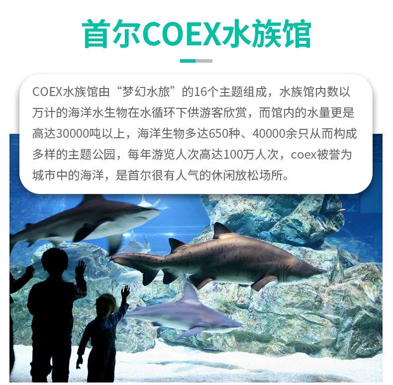 coex_01.jpg