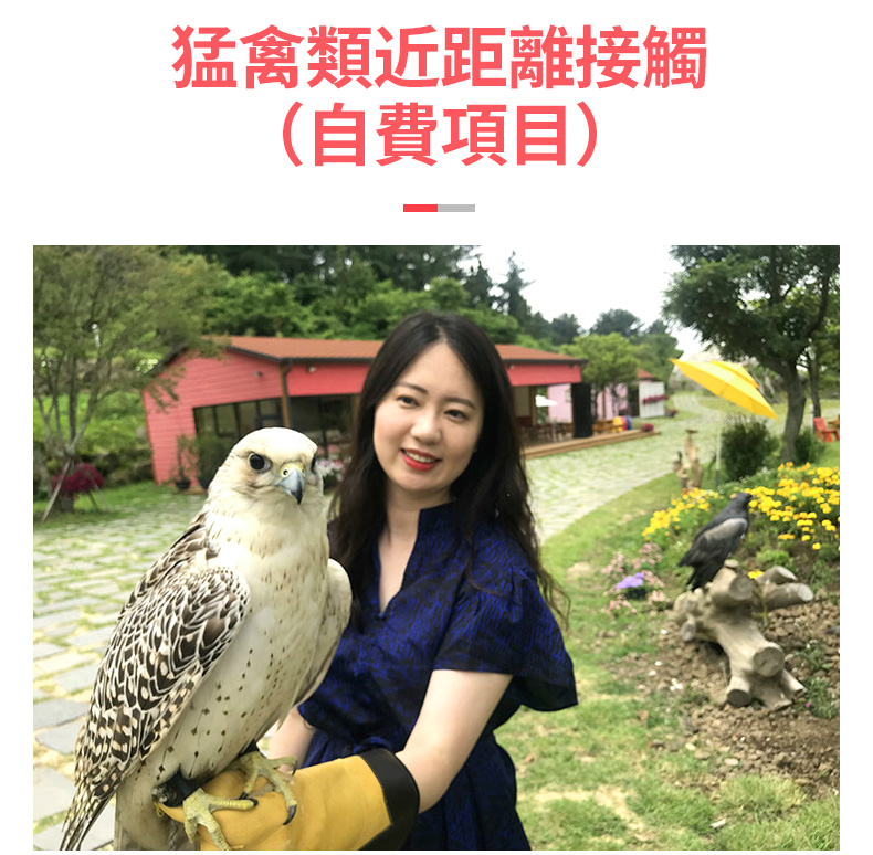 花鳥園繁_05.jpg