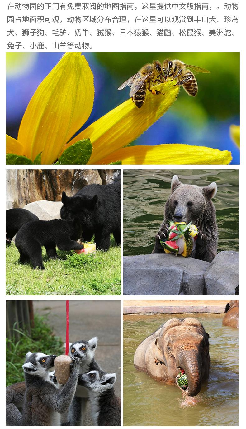 首尔乐园(首尔大公园)-详情页_11.jpg