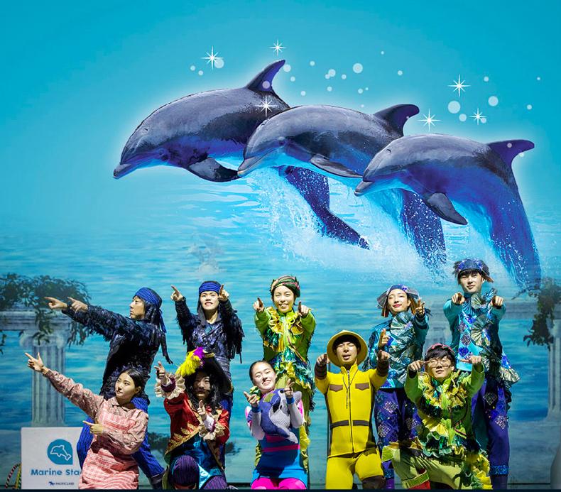 太平洋乐园动物表演详情_02.jpg