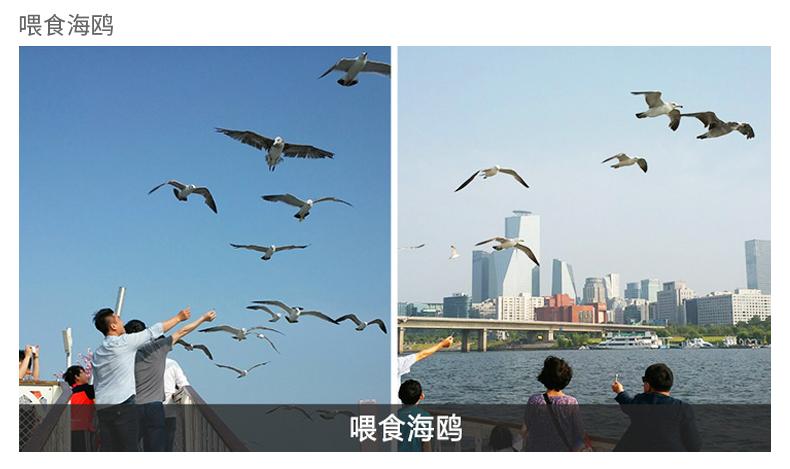 首尔汉江游览船E.LAND(不含自助餐)-详情页_10.jpg