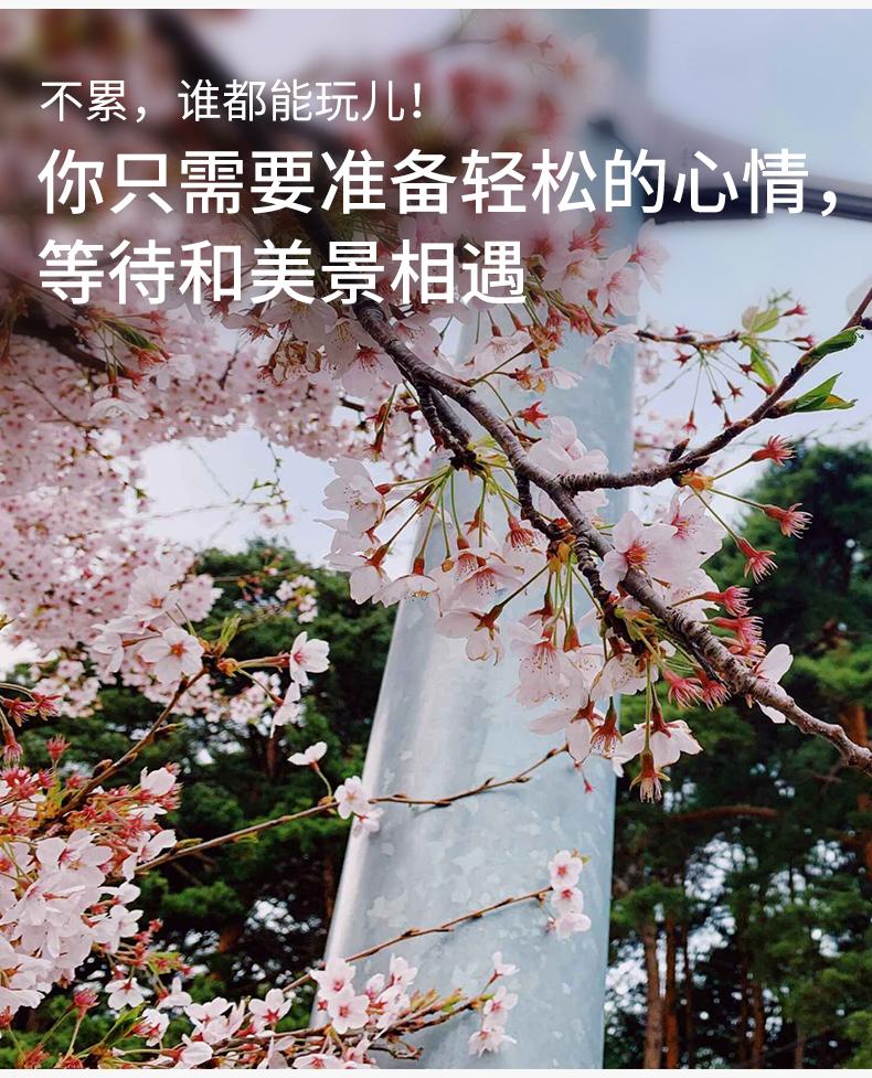 江陵一日游-详情页-新的_05.jpg