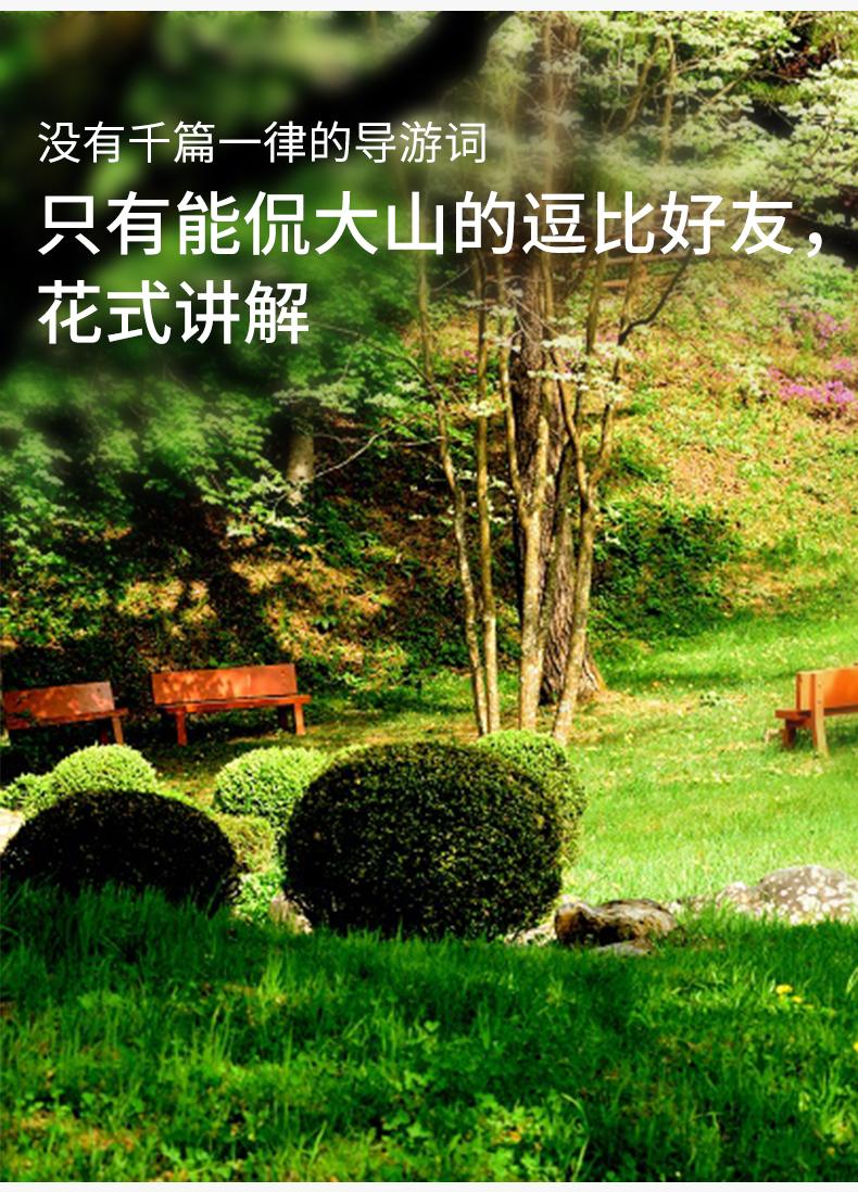 江陵一日游-详情页-新的_07.jpg