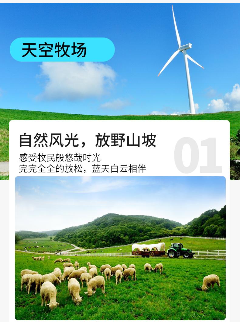 江陵一日游-详情页-新的_08.jpg