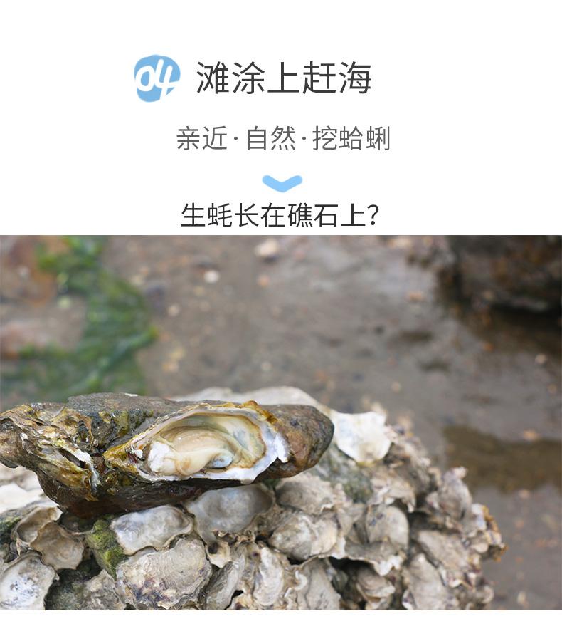 济扶岛一日游--详情页_17.jpg