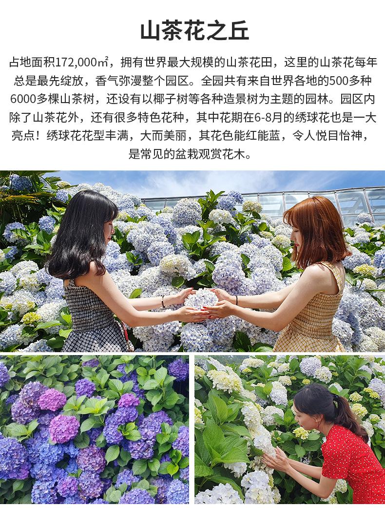 济州岛红星精品一日游-详情页_11.jpg