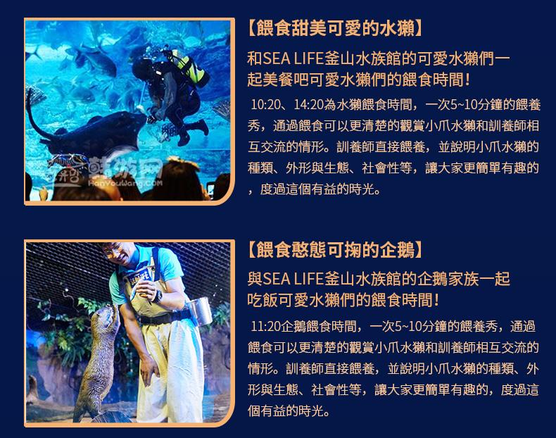 釜山水族館-詳情頁繁體_21.jpg