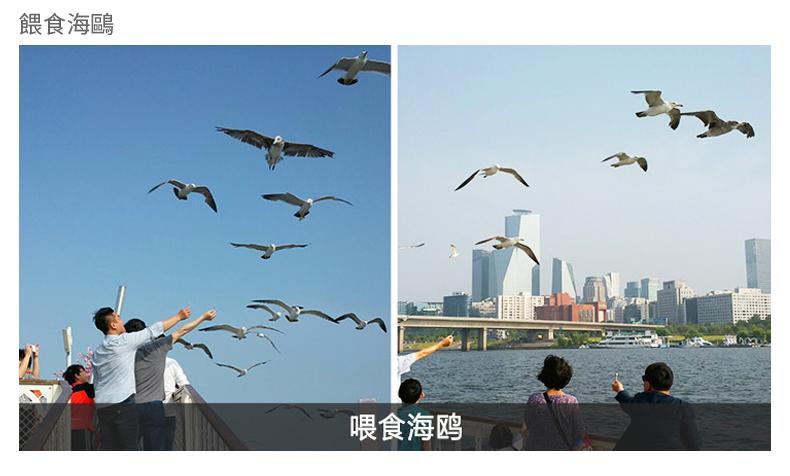 首爾漢江遊覽船E.LAND(不含自助餐)-詳情頁繁體_13.jpg