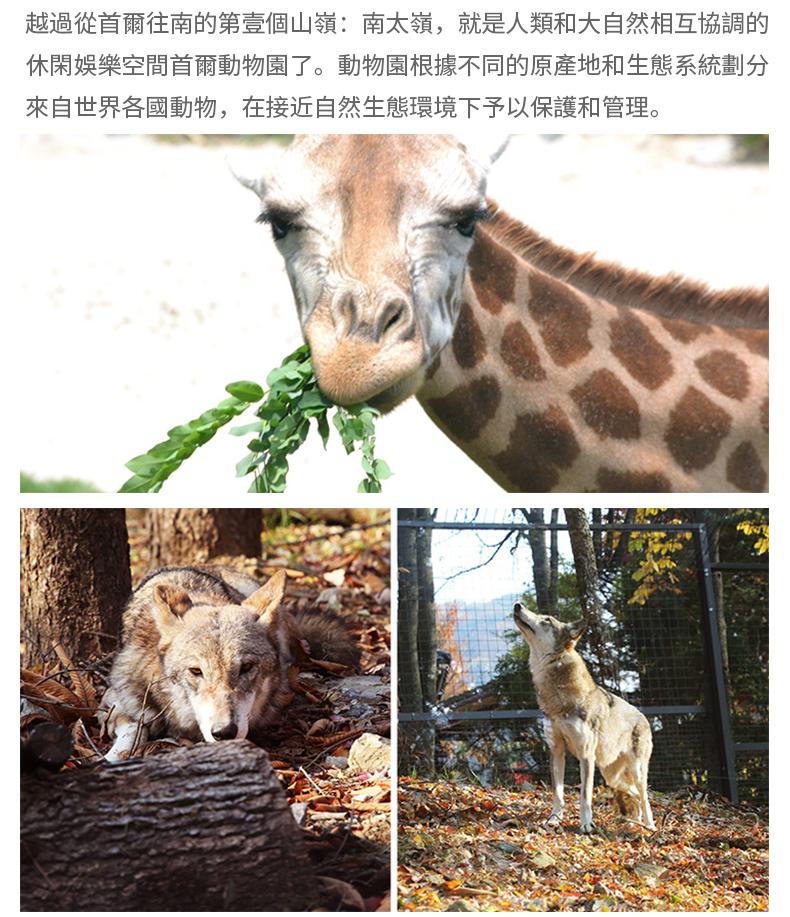 首爾樂園(首爾大公園)-詳情頁繁體_12.jpg