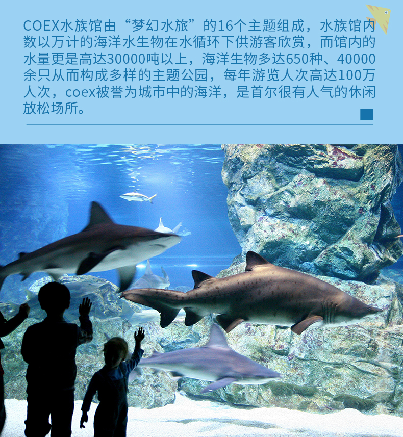 COEX水族馆-详情页_03.jpg